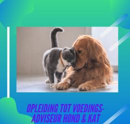 Opleiding voedingsadviseur voor honden en katten - Unieke online opleiding