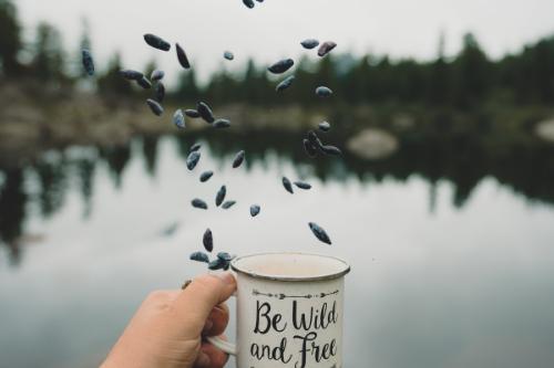 Zeit nehmen, frei sein