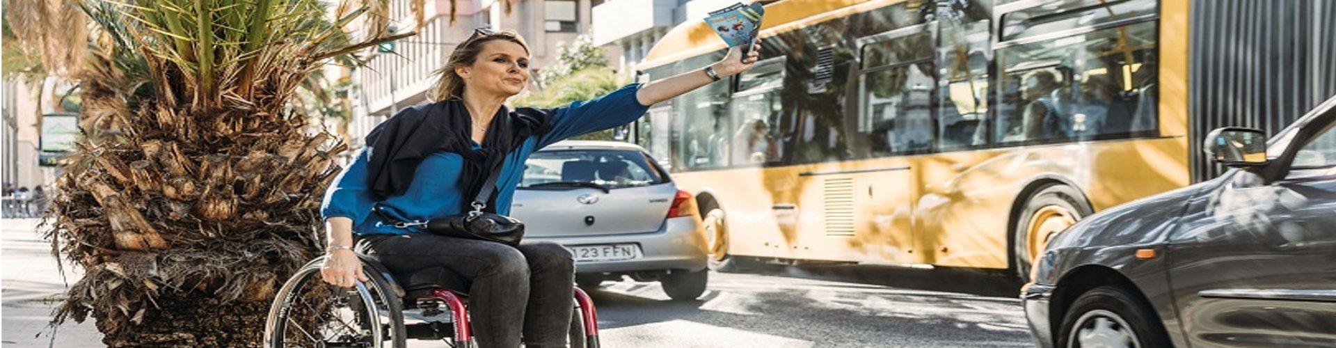 rolstoelreizen