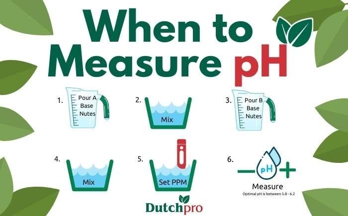 pH- Bloom Dutchpro nutrients