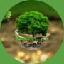 basiscursus-header-duurzaam