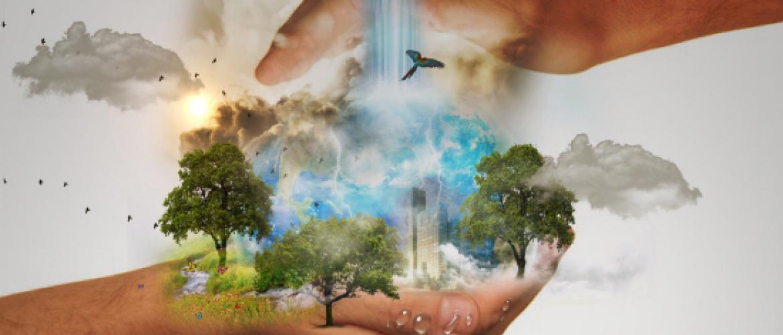 AFM maakt werk van duurzame transitie