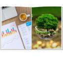 cursus-duurzaam-beleggen
