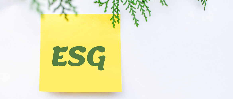Wat is ESG beleggen?
