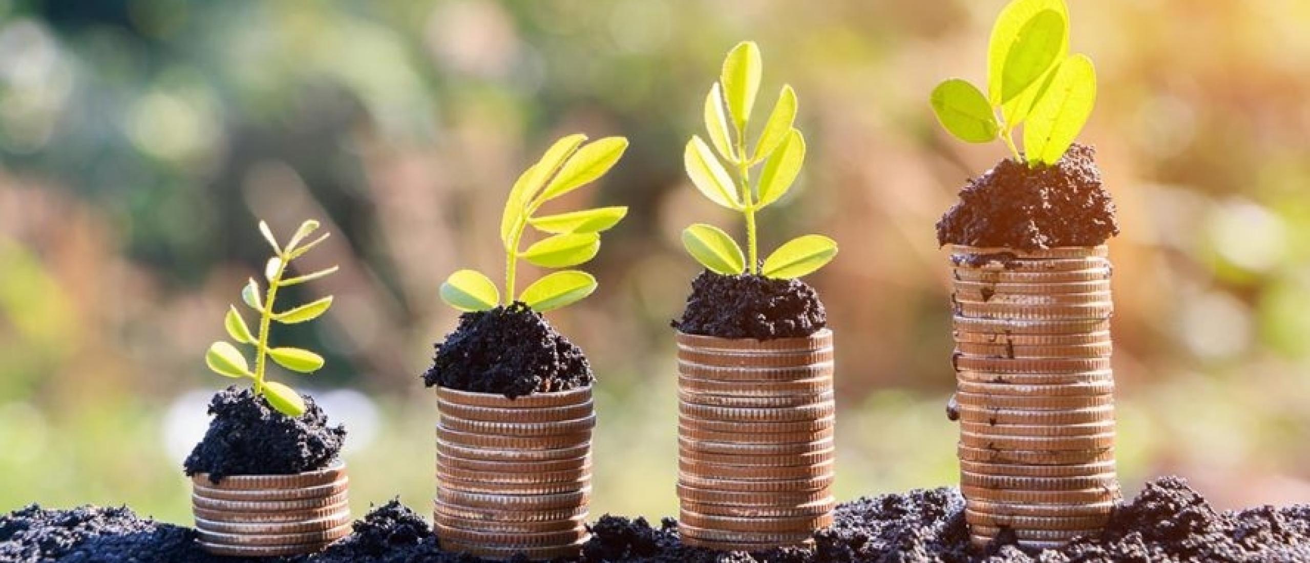 Het rendement van duurzaam beleggen is vaak beter