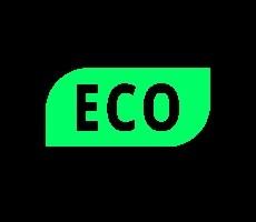 groene dashboardlampjes - economisch rijgedrag 1