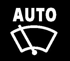 witte dashboardlampjes - ruitenwissers op stand automatisch