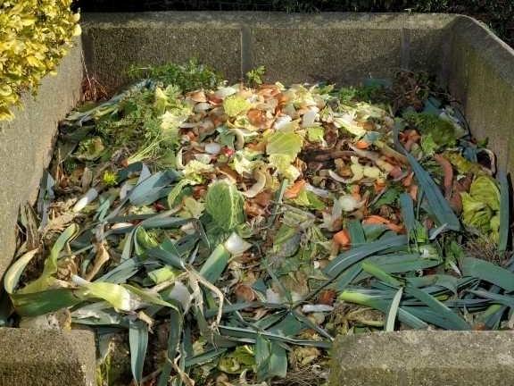 compost hoop