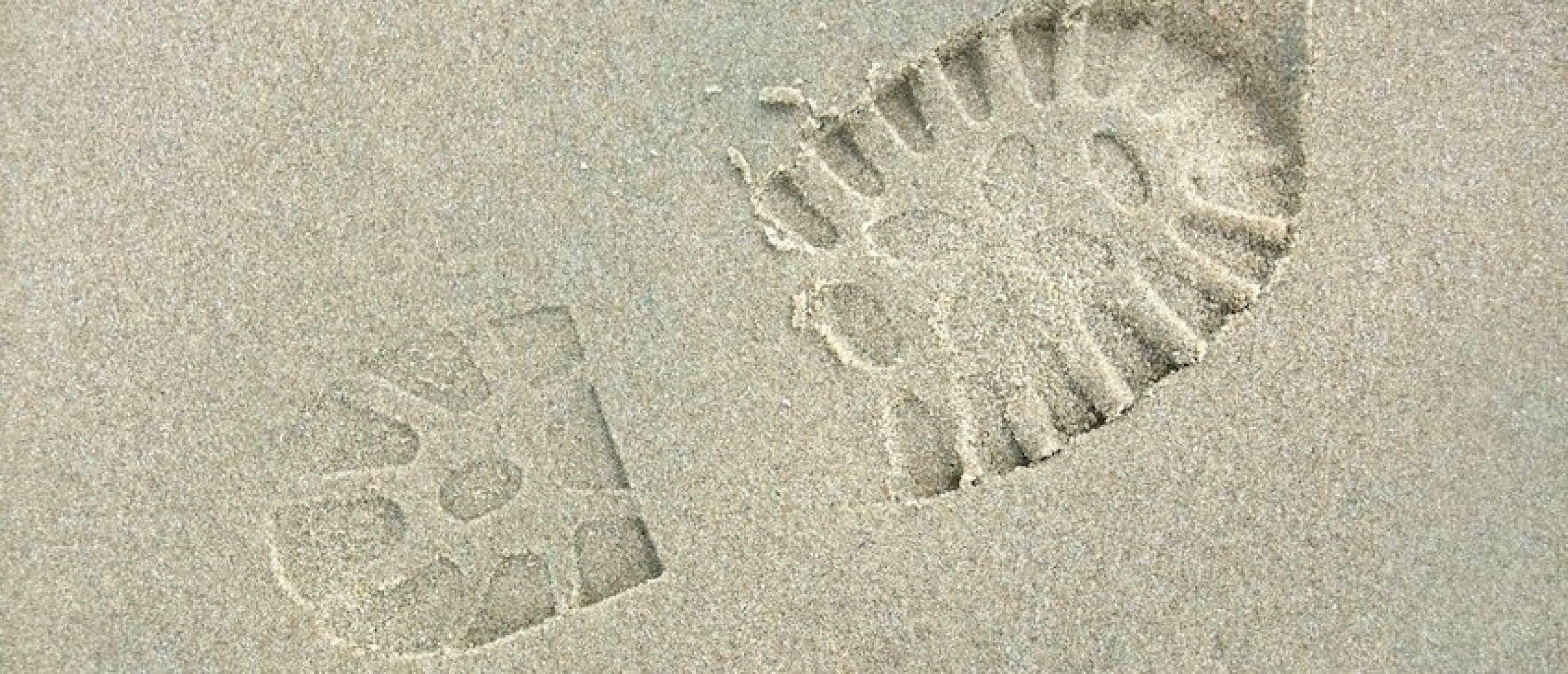 80 Tips die helpen om je ecologische voetafdruk te verkleinen