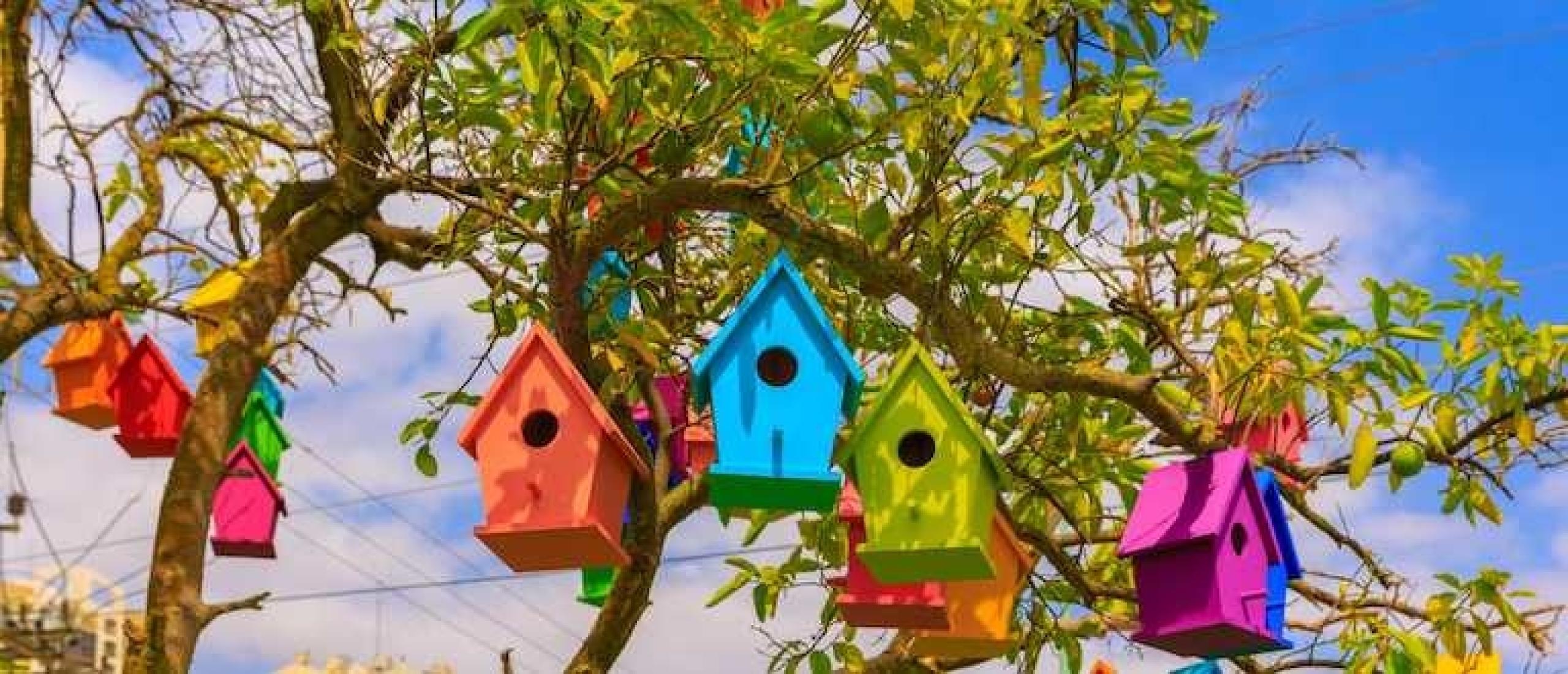 Vogelhuisjes zelf maken is een leuke bezigheid
