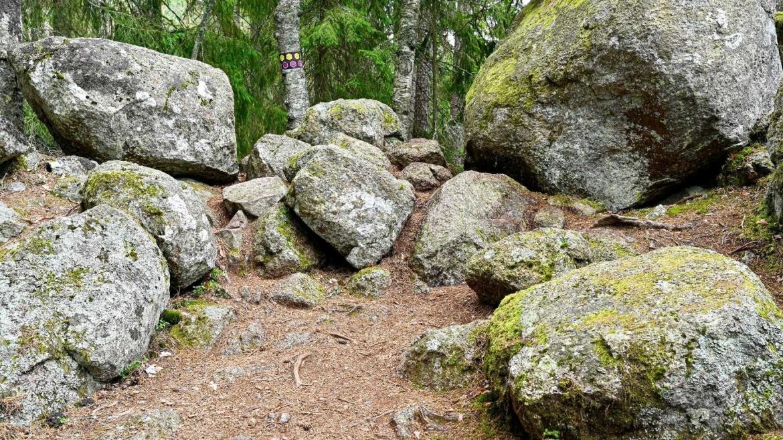 grote-rotskeien-in-zweden