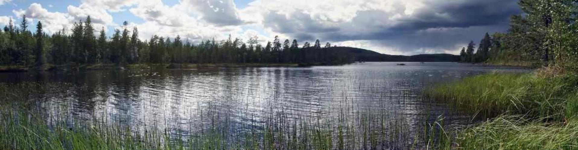 huisje huren in Zweden van Nederlanders