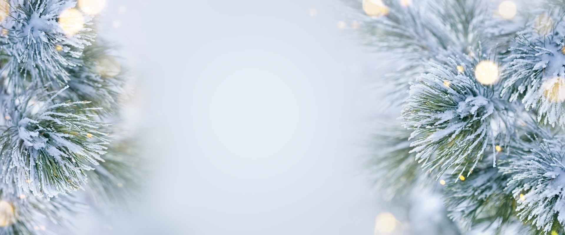 Kerstboom opruimen en kerstspullen opruimen