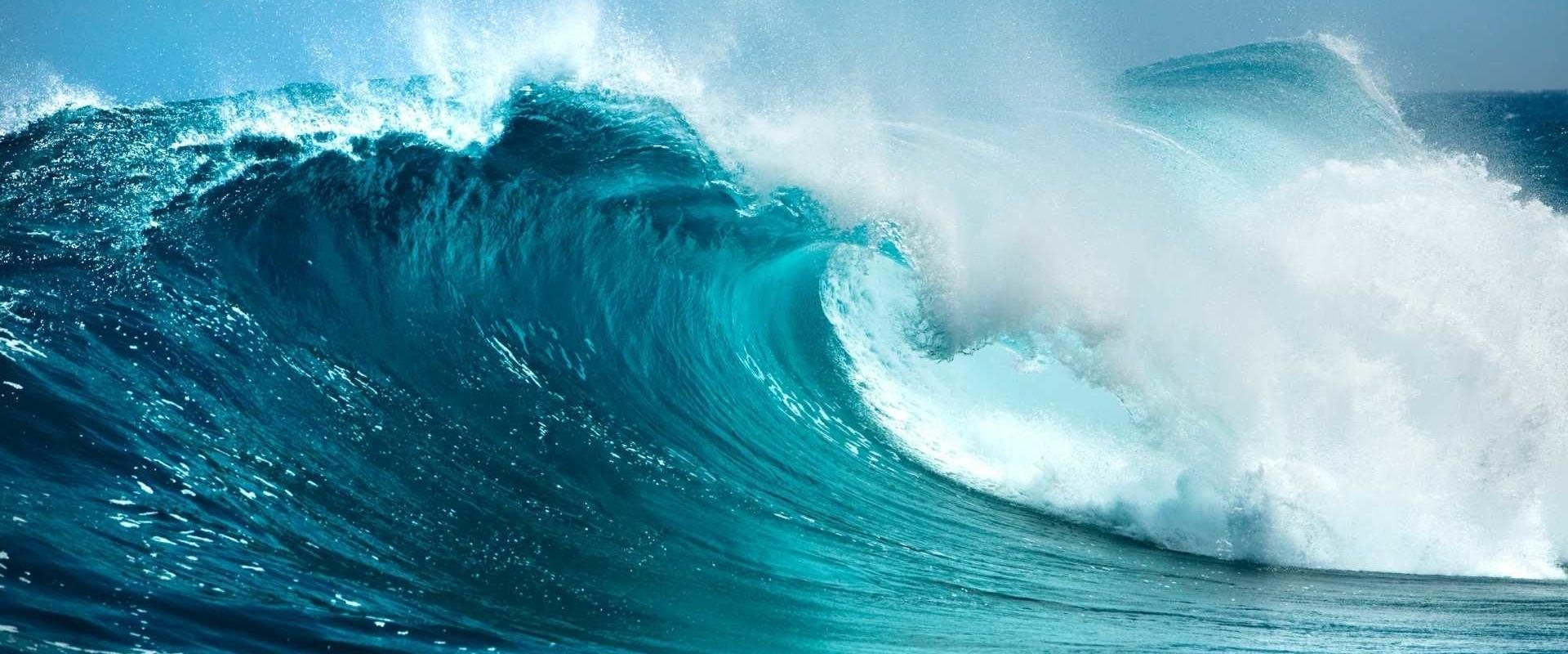 MBRC armbanden; Save the ocean armband