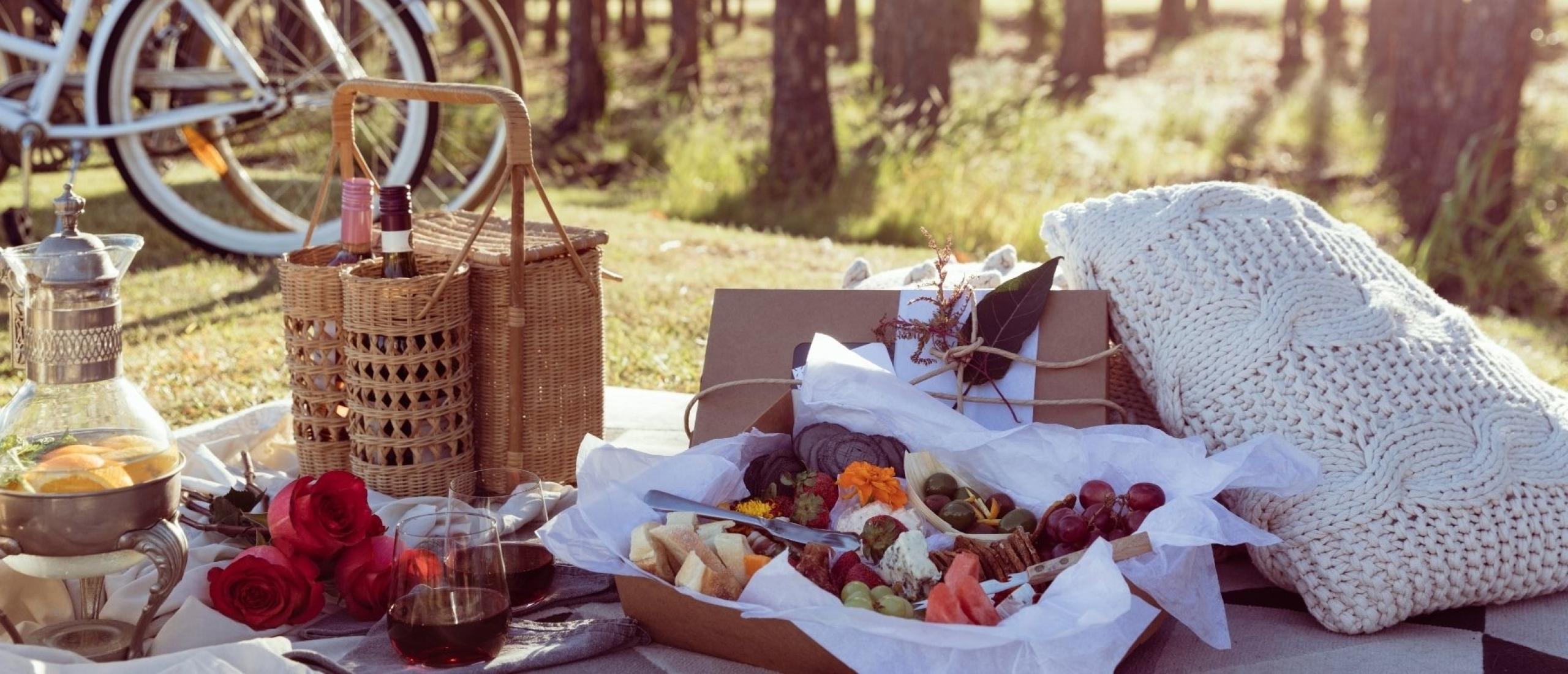Picknicken op het strand, in het bos of aan het water