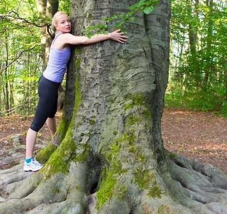 Duurzaam leven voor de bomen