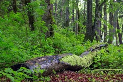 waarom duurzaam leven