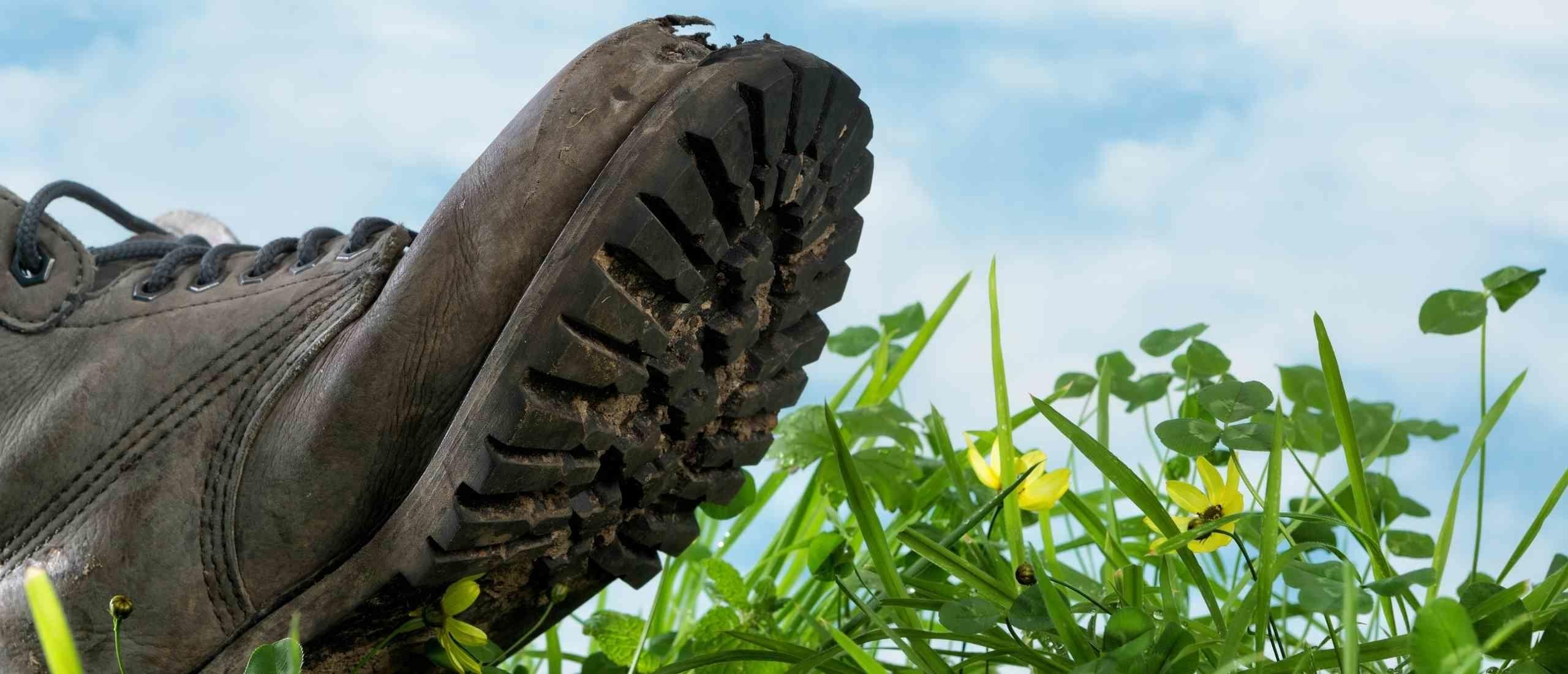 Wat is mijn ecologische voetafdruk?