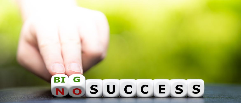 Waarom veel mensen niet succesvol zijn!
