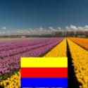 Eindexamenyoga in Noord-Holland Amsterdam Haarlem Alkmaar Den Helder