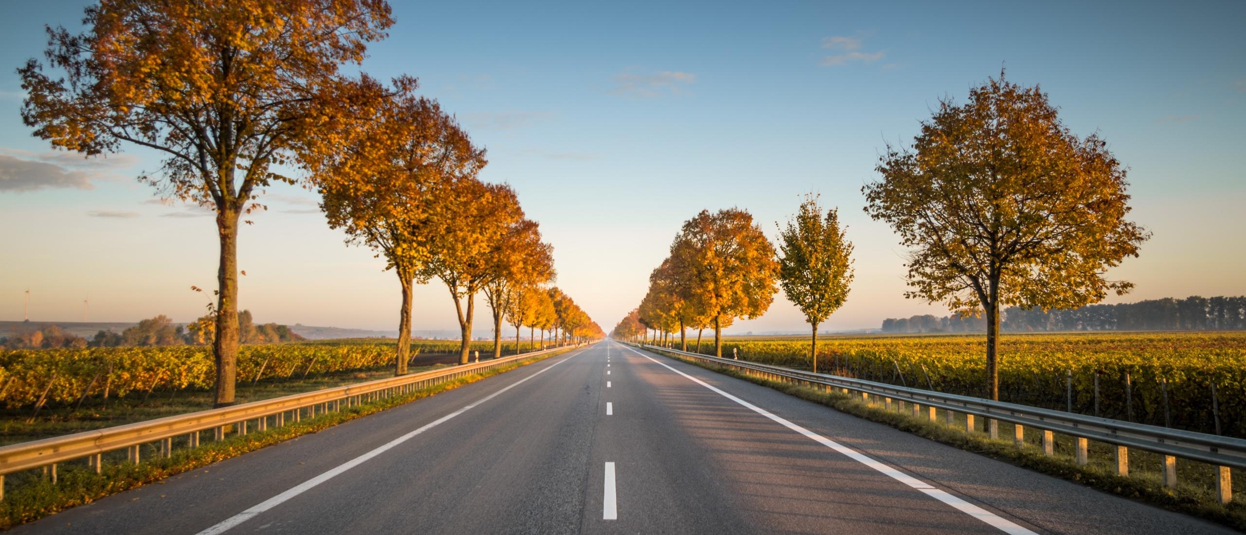 Een blik op de weg
