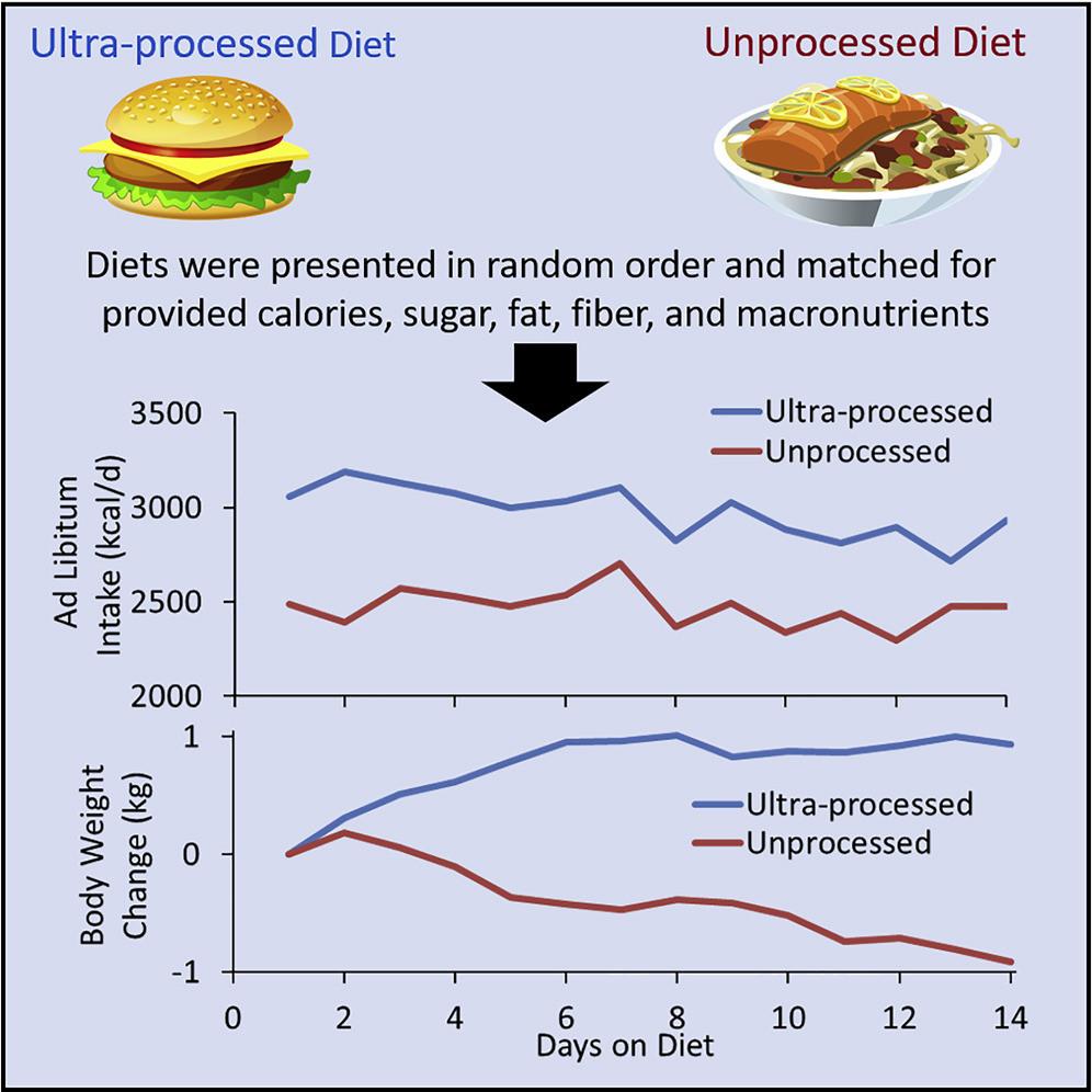 visuele weergave van het effect van bewerkt voedsel op de calorie inname - afvallen zonder dieet