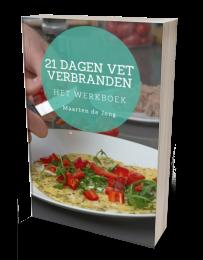 21-dagen-vetverbranden-werkboek