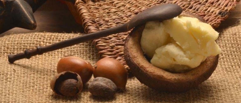 Fair Trade shea butter: The Savannah Fruits Company