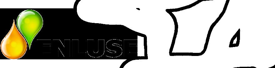 Enluse logo