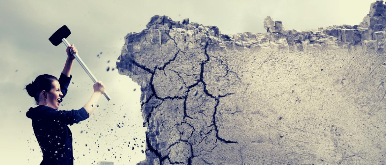 Enneagram als ontwikkelingsmodel: sloop die muren!