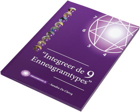 enneagram boekje ontwikkelingsniveaus