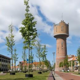 Voordelen van een aankoopmakelaar in Den Helder