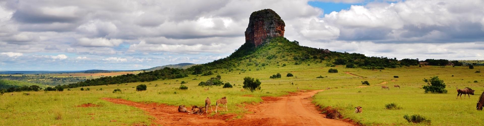 entabeni-private-game-reserve-safari-informatie-zuid-afrika-1920x500-1
