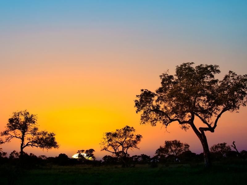 Sunset Kruger National Park - Luxe Safari Zuid-Afrika