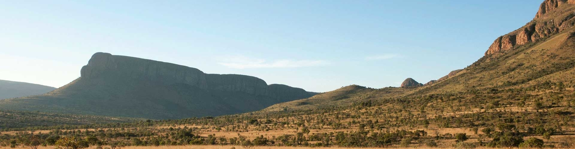 Marakele National Park - Luxe Safari Zuid-Afrika - Header