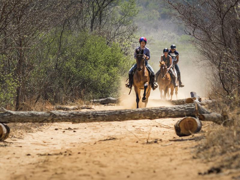 Marakele National Park - Luxe Safari Zuid-Afrika - Paardrijden