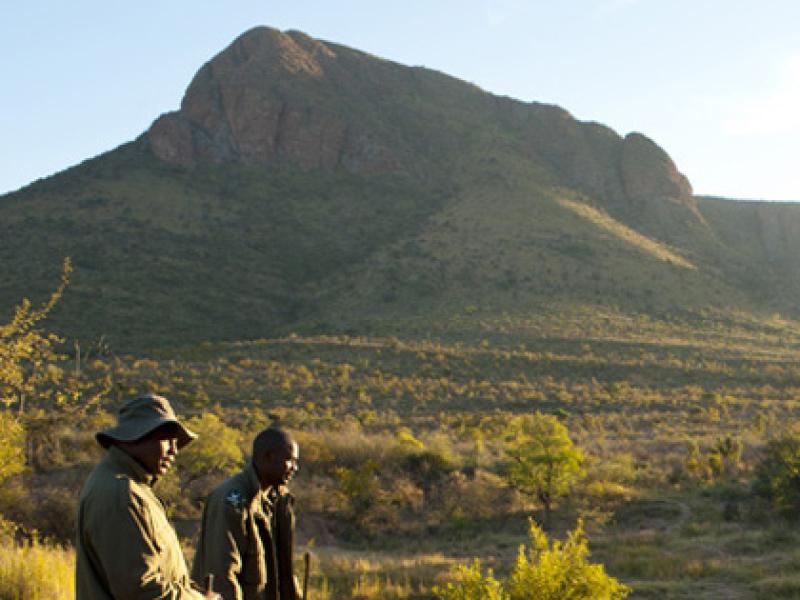 Marakele National Park - Luxe Safari Zuid-Afrika - Tour Guides