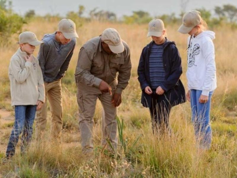 Welgevonden Game Reserve - Luxe Safari Zuid-Afrika