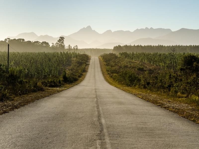 Tsitsikamma National Park - Luxe Safari Zuid-Afrika - Garden Route