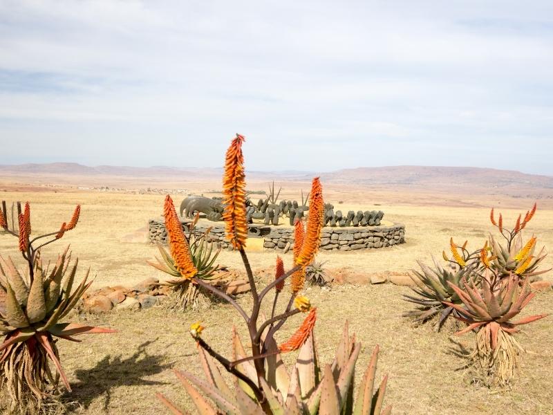 Battlefields Route - Regio's en Provincies Zuid-Afrika