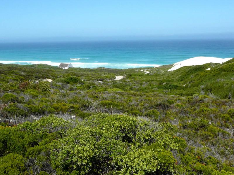 de-hoop-nature-reserve-zuid-afrika-fynbos-and-ocean-.jpg
