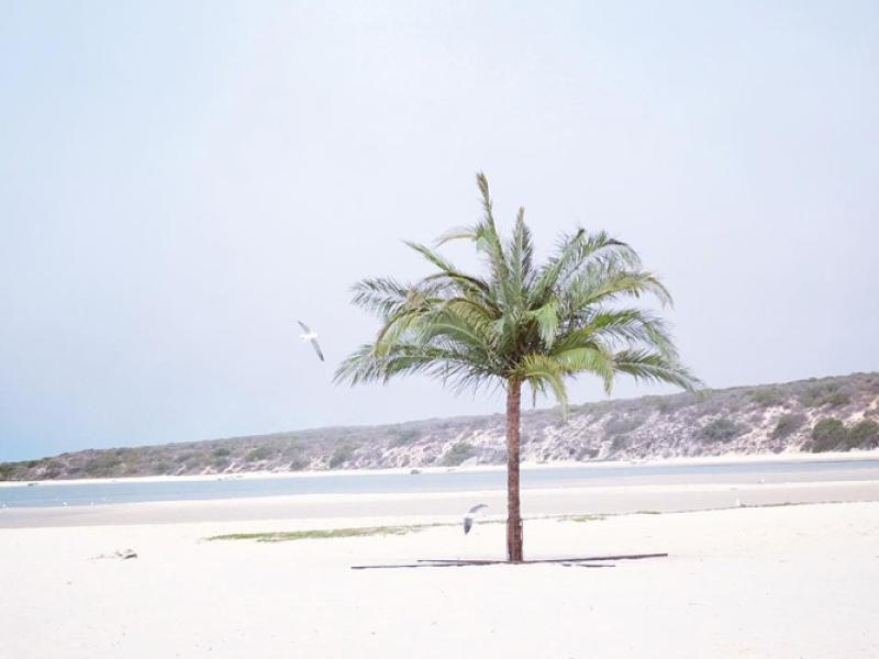 kraalbaai-best-west-coast.jpg