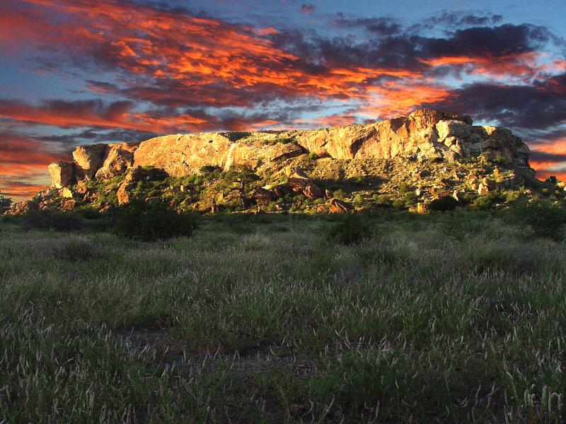 mapungubwe-national-park-mapungubwe-hill_2.jpg