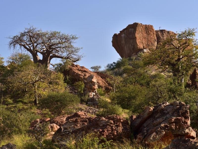 mapungubwe-zuid-afrika