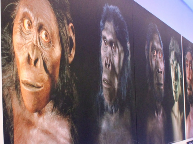 maropeng-visitors-centre-walls.jpg