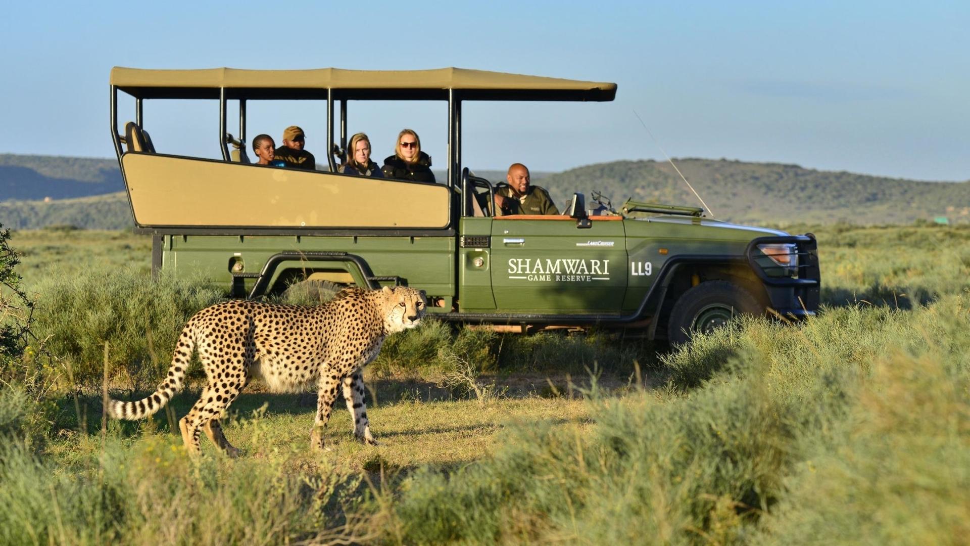 shamwari-game-reserve-big-five-safari.jpg