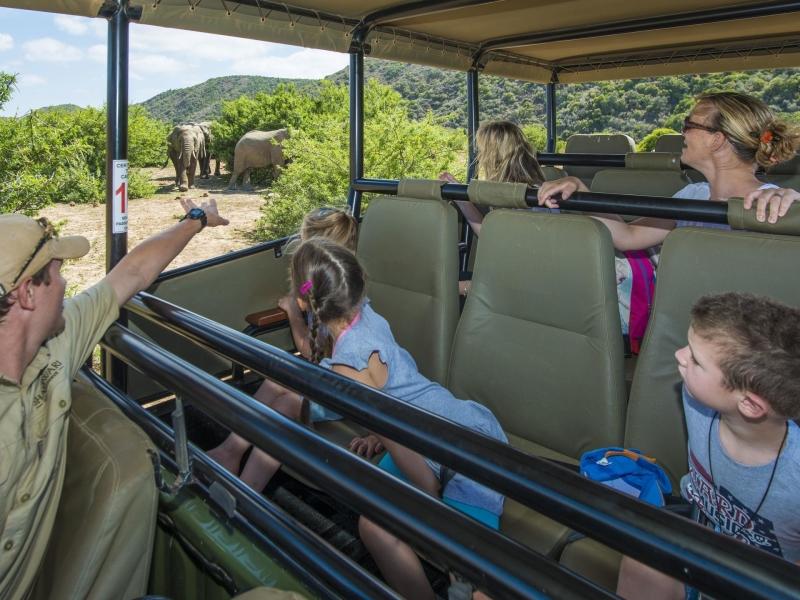 shamwari-game-reserve-kids_on_safari.jpg
