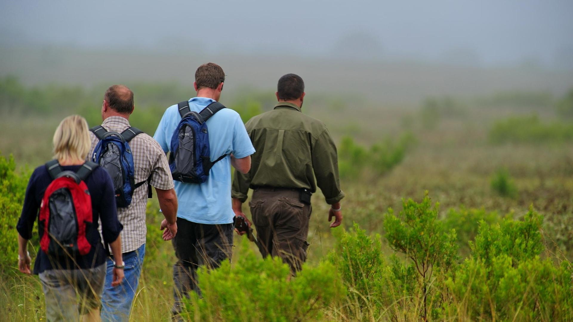 shamwari-walking-safari-1.jpg