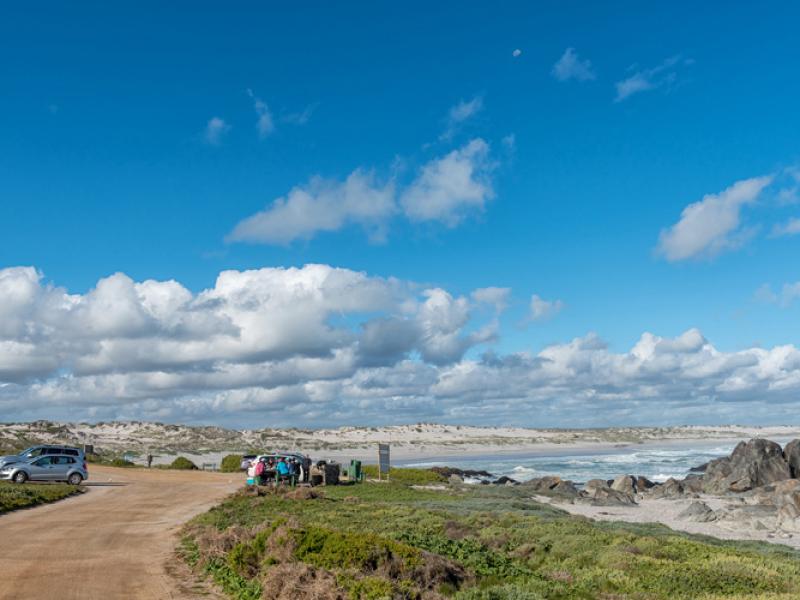 tsaarsbank-picnic-west-coast-national-park.jpg