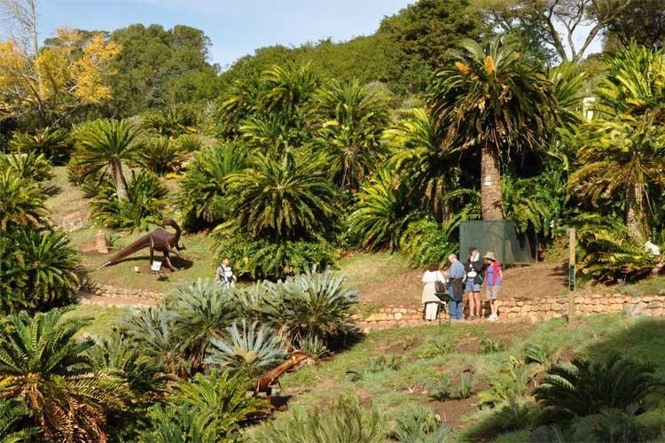 dinosaur-exhibition-kirstenbosch-to-do-kids
